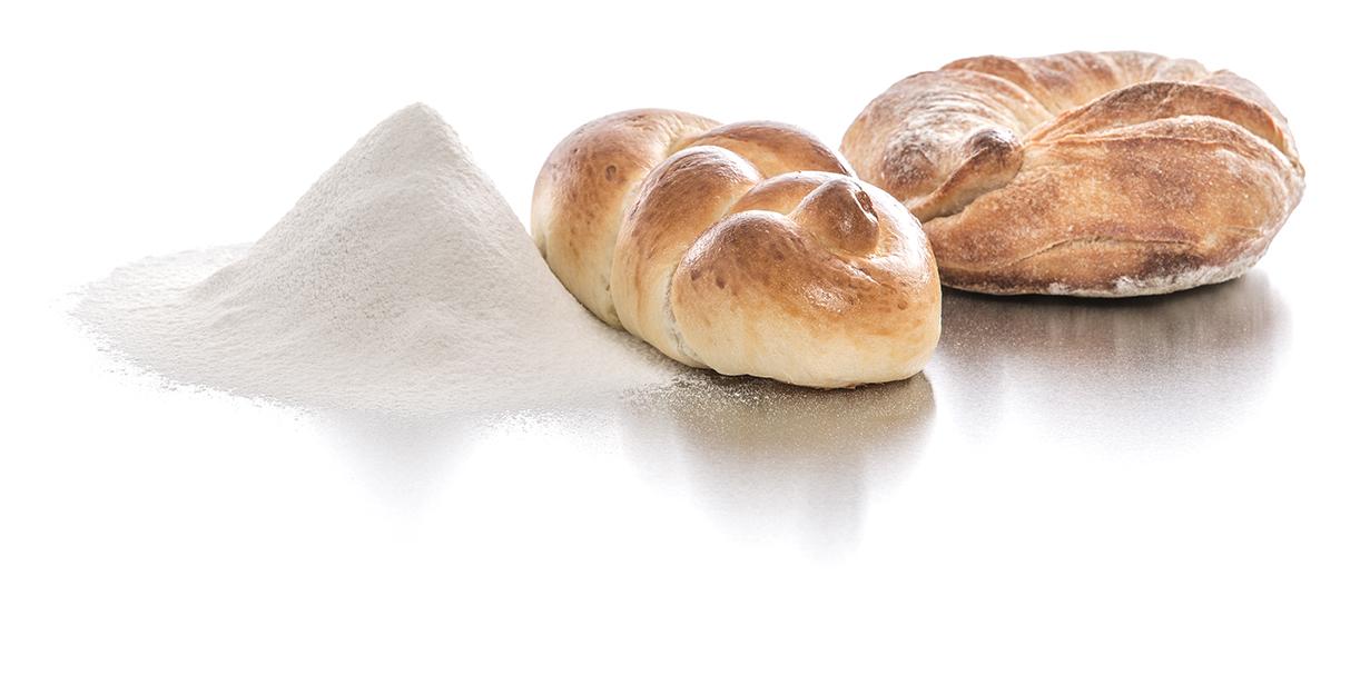 flour_boa_2776_rgb
